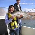 TAYLER'S 4# STRIPER-LAKE POWELL
