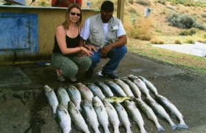 lake powell fishing rates